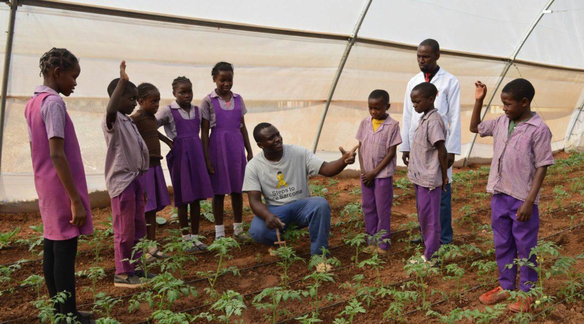 chongwe conservation farming